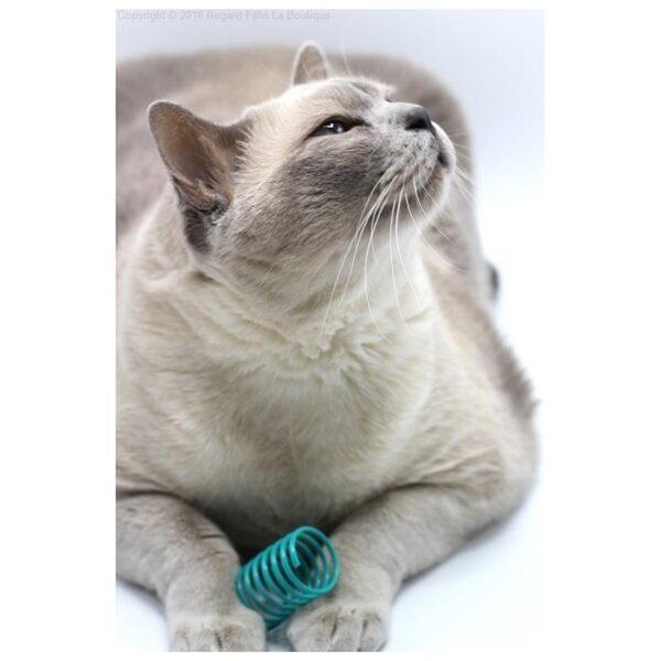 Purrs Cat Toys - Flingie Springies - springveren speeltje voor katten kattenspeeltje