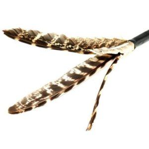 Purrs Purrize beloning standalone veren kattenspeeltje om te geven na het spelen met de hengel
