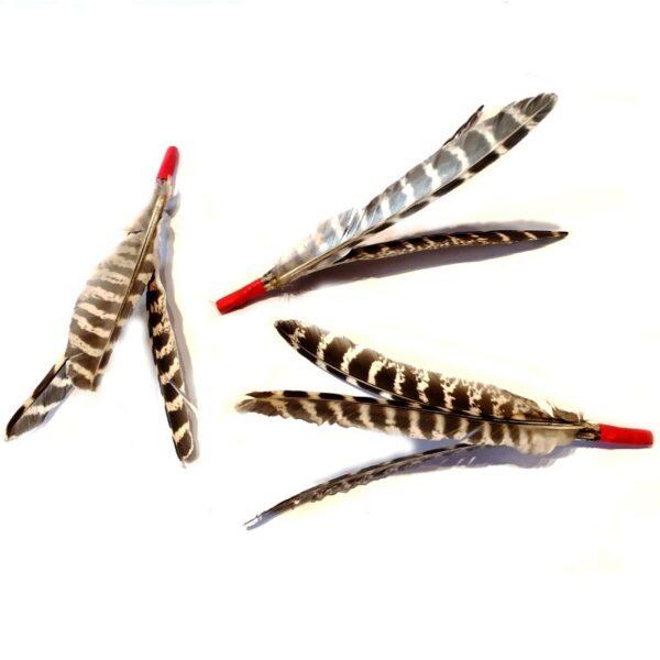 Purrs Cat Toys Purrize beloning standalone veren kattenspeeltje om te geven na het spelen met de hengel