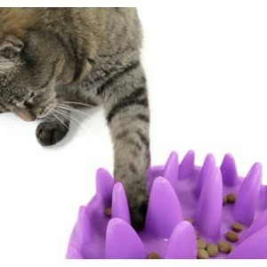 Voerpuzzels en slow feeders