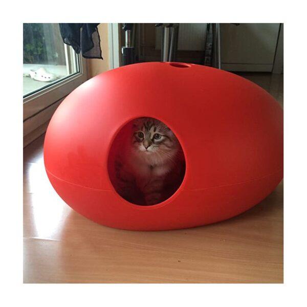Poopoopeedo rood kat