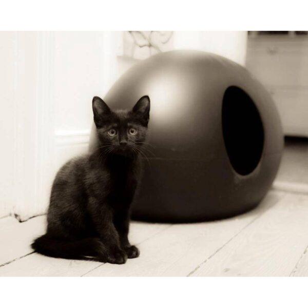 Poopoopeedo design kattenbak zwart