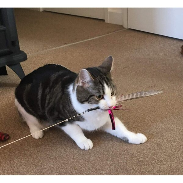Purrs Cat Toys Shimmer Spinner prooi navulling voor Purrsuit hengel kattenhengel - kattenspeeltjel