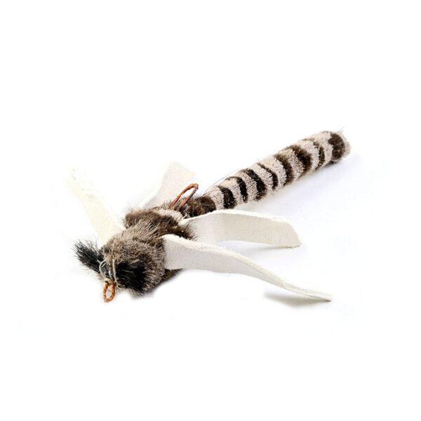 Tabby Tijger - Libelle prooi voor hengels
