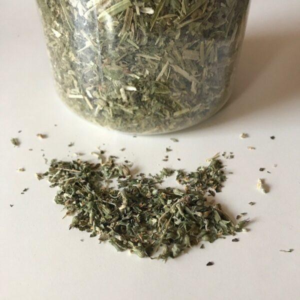 organic bio kattenkruid catnip pot 80 gram