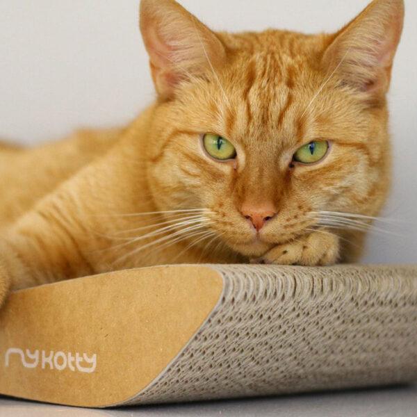 myKotty - TOBI - Bruin scratcher krabmeubel kat