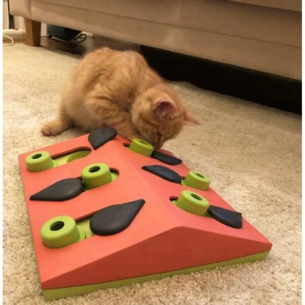 Petstages - Melon Madness Puzzle & Play kat puzzelt